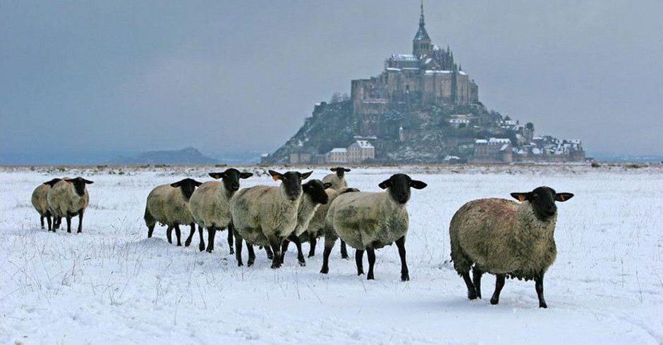 mont-saint-michel noel